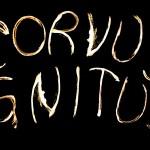Logo der Feuertranzgruppe Corvus Ignitus. Zusammengesetzt aus einzelnen Feuerspuren.